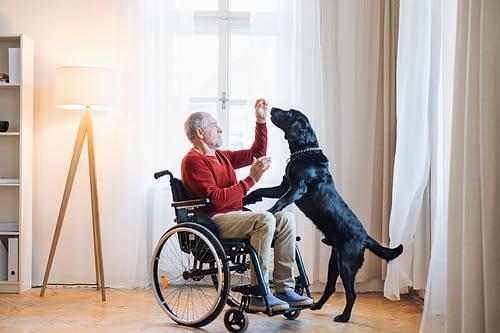 senior care blog