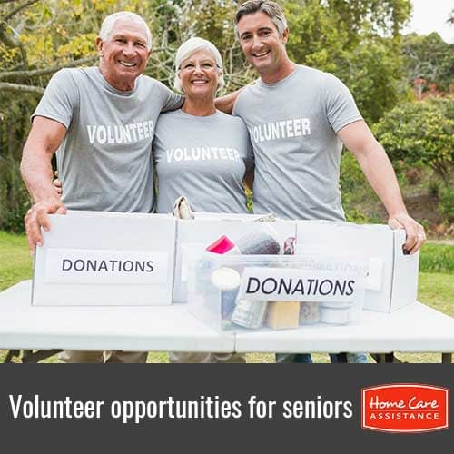 5 Opportunities Where Seniors Can Volunteer in Burlington, VT